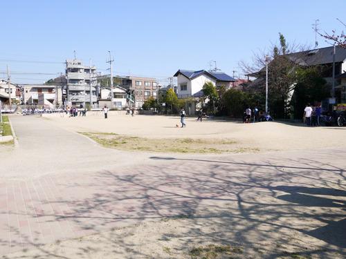 南中振公園-15032620