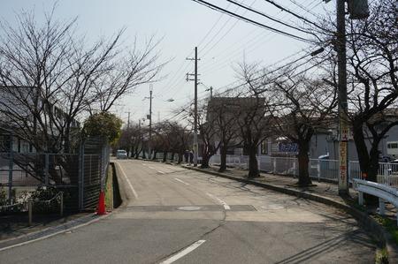 津田東自転車駐輪場130319-07