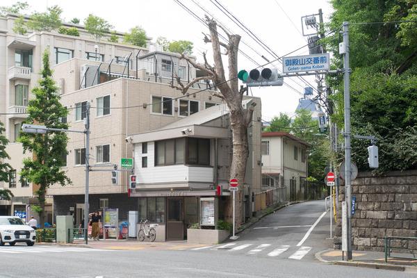 東京-190605101