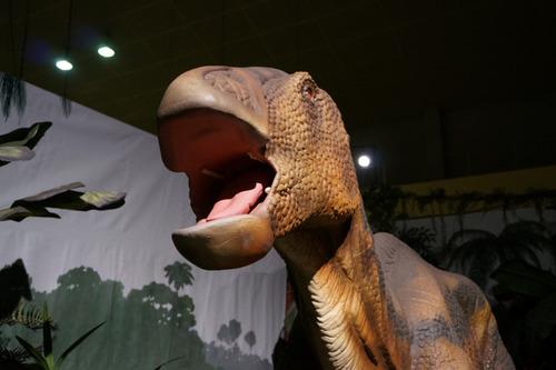 ひらパー恐竜大冒険-50