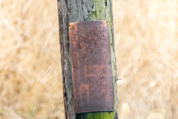 電柱-1703142