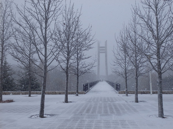雪の美月橋