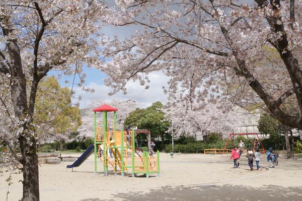 出口ふれあい公園2