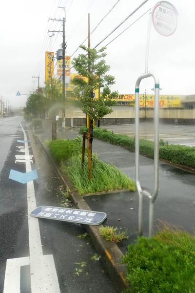 台風21号-18090442