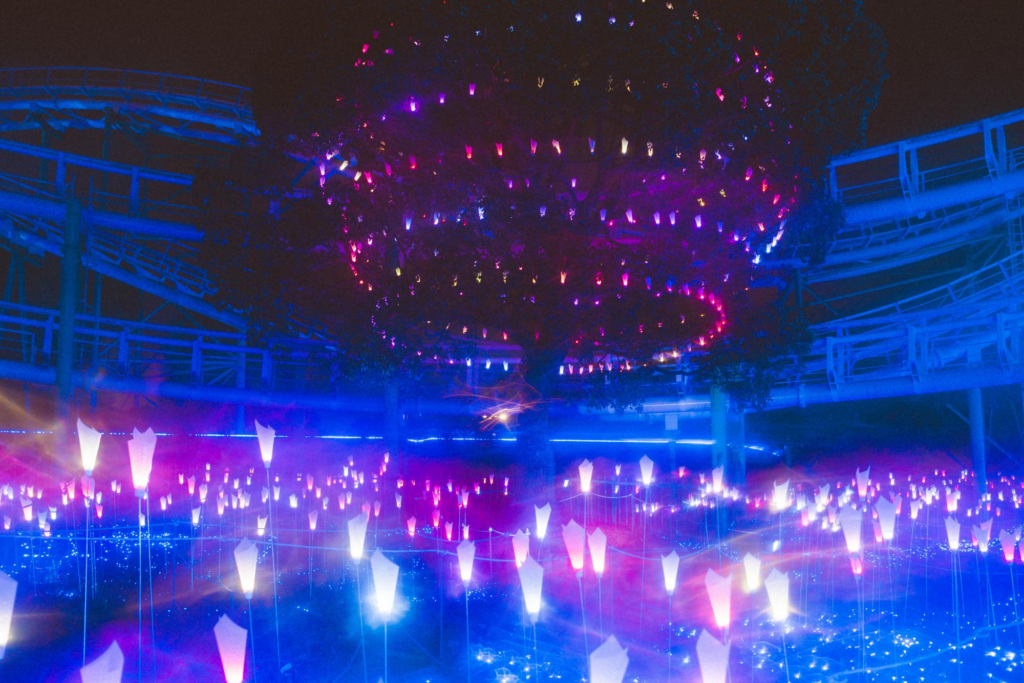 光の遊園地-20110754