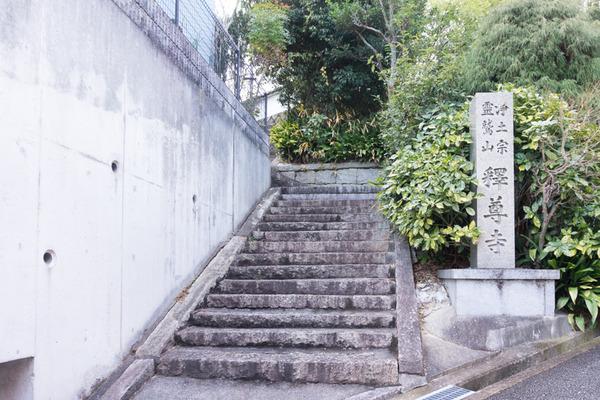 坂道ダッシュ-17011712