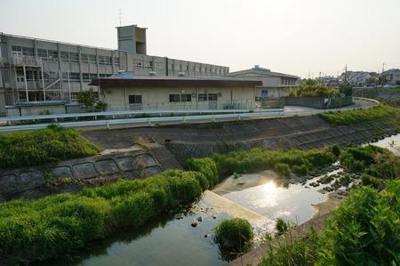 船橋川130506165536