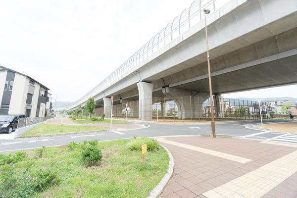 向井田-4