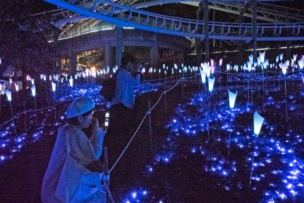 京阪コラボ_ひらパー光の遊園地_GH5小-216