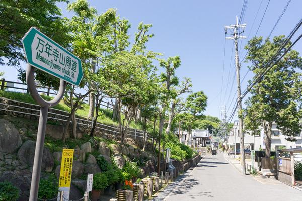 枚方田中邸のむく-8
