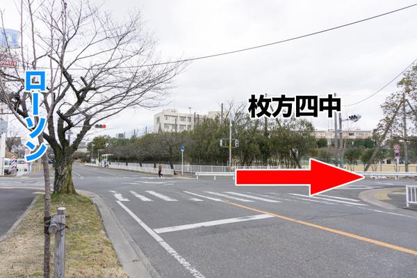ペットコロニー香里ケ丘店-ドッグサロン-95