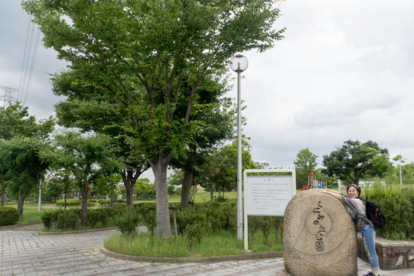 くにみの丘公園-1806281