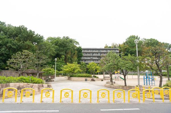 坊主池公園-1705094