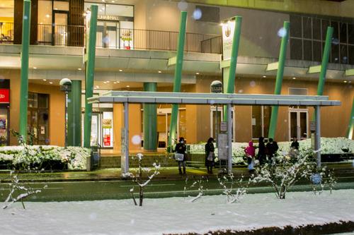 雪の正月-33