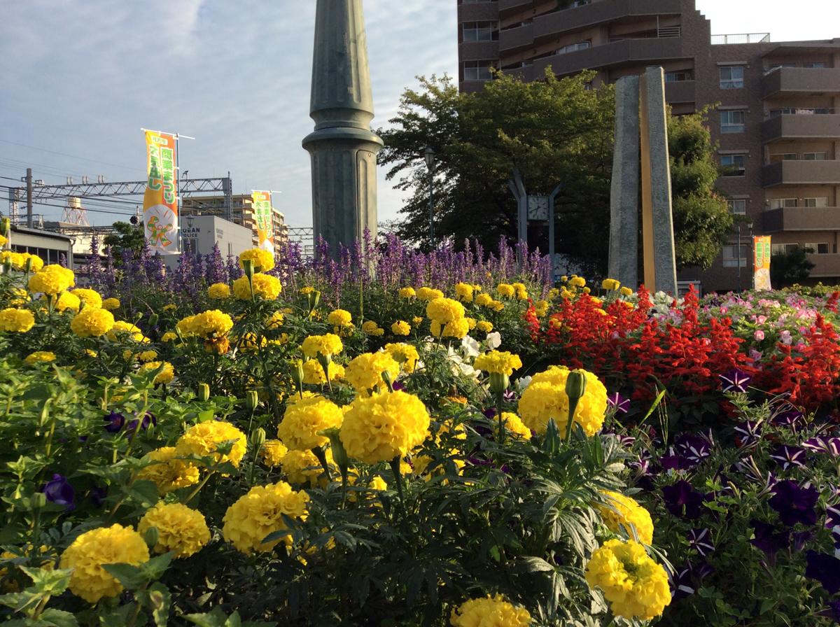 御殿山駅の花