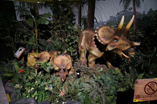 ひらパー恐竜大冒険-54