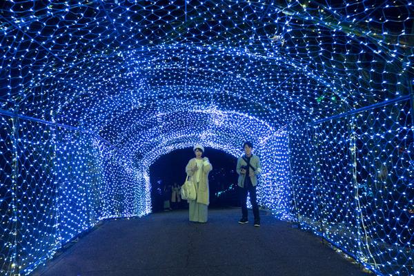 京阪コラボ_ひらパー光の遊園地_GH5小-234