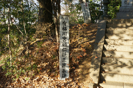 伝王仁墓130125-06
