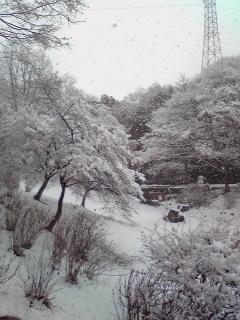 山田池06