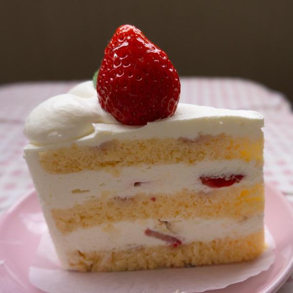 シロモトケーキ-14