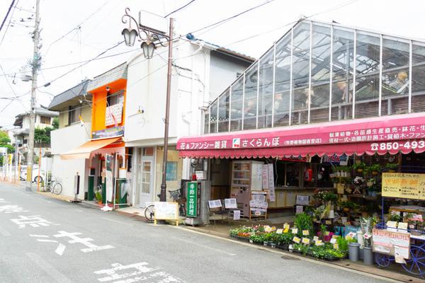 sakuranbo_広角_小-20200717-16