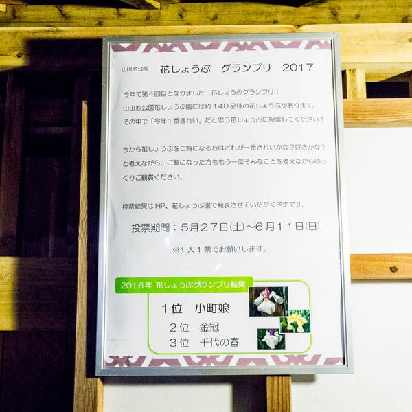 山田池公園-17060313