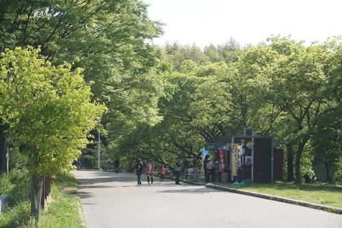山田池公園-3