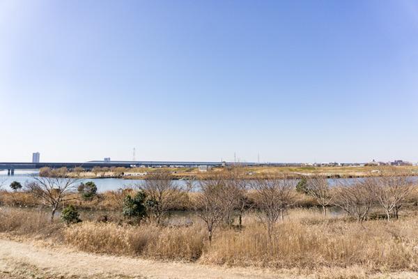 松戸-75