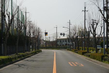 伊加賀スポーツセンター130405-05