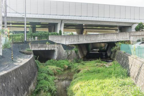 責谷川-14081925
