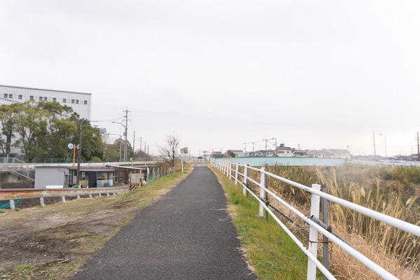 東山-213