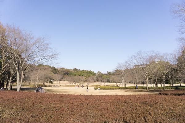 松戸-138
