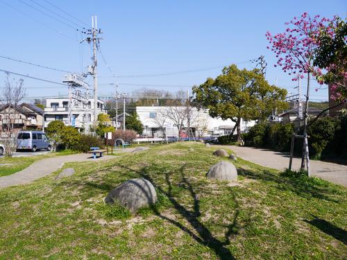 南中振公園-15032627
