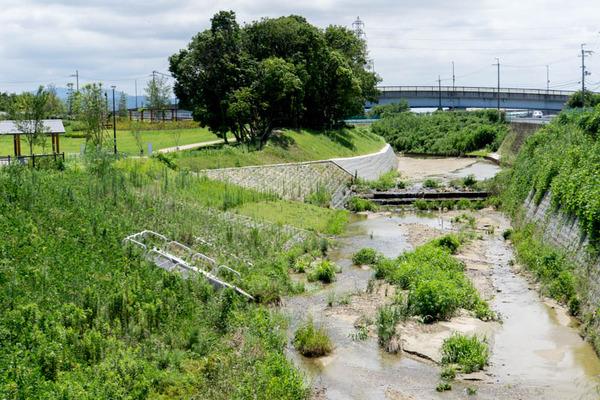 山田池公園-1707261