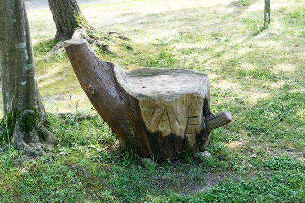 市民の森-18061330