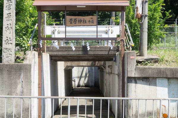 藤阪-1606233