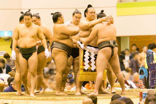 大相撲-1710208