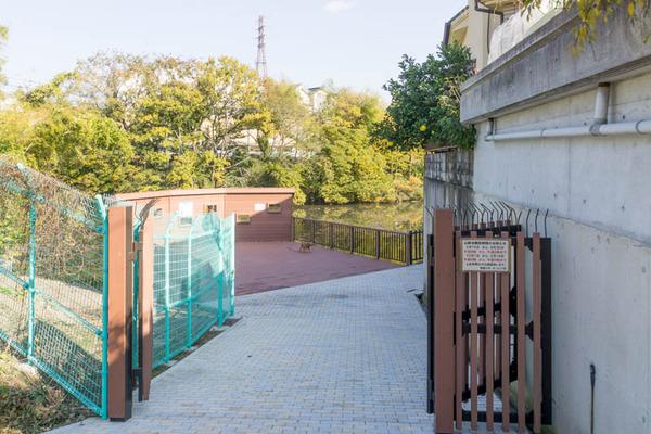池の水ぜんぶ抜く5-1711275