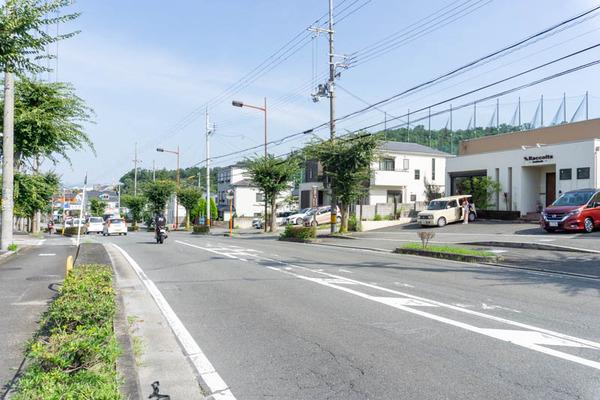 ラッコルタ(小)20080642