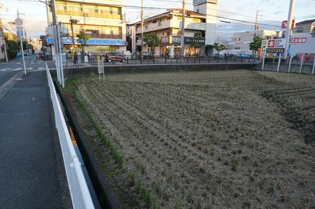 船橋本町コンビニ131111-16