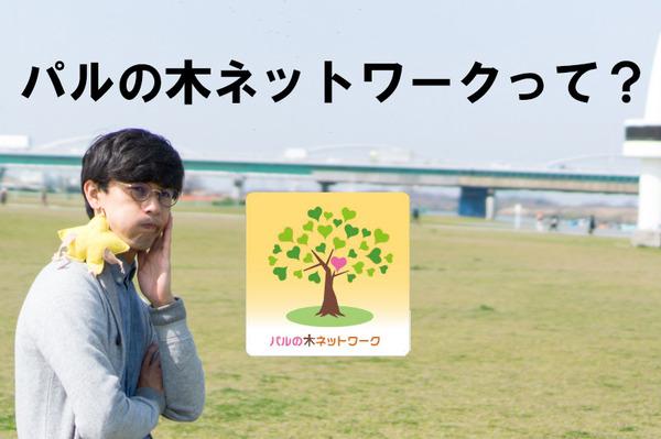 パルの木6