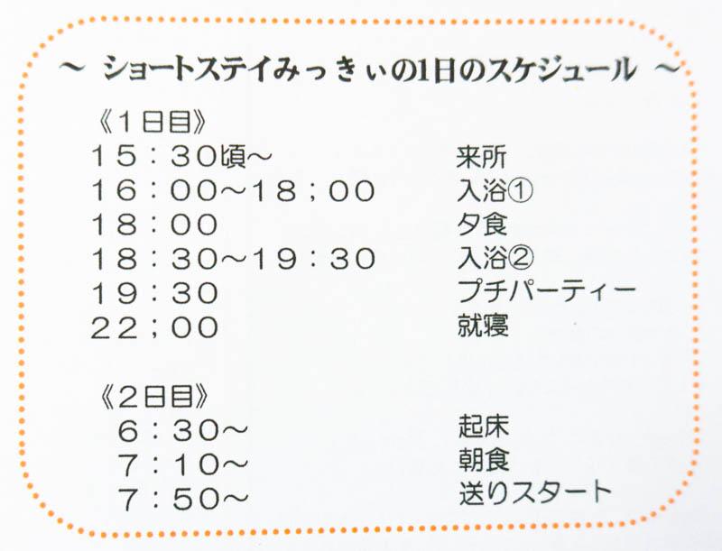みっきぃパンフレット2010124