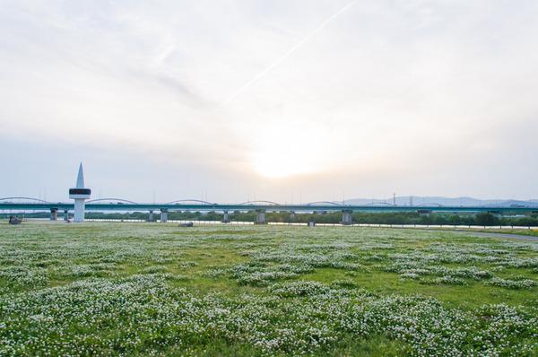 淀川-20