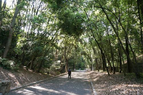 山田池公園-1