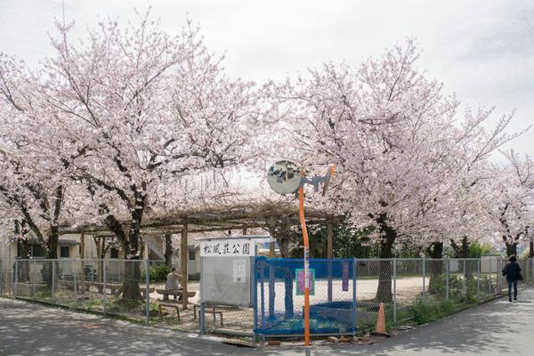 松風荘-1604051