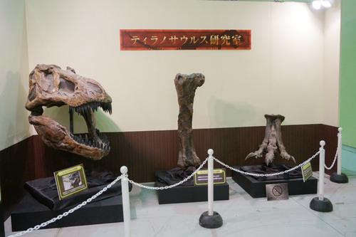 ひらパー恐竜大冒険-29