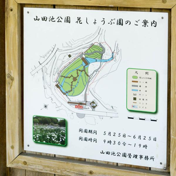 山田池公園-1805252