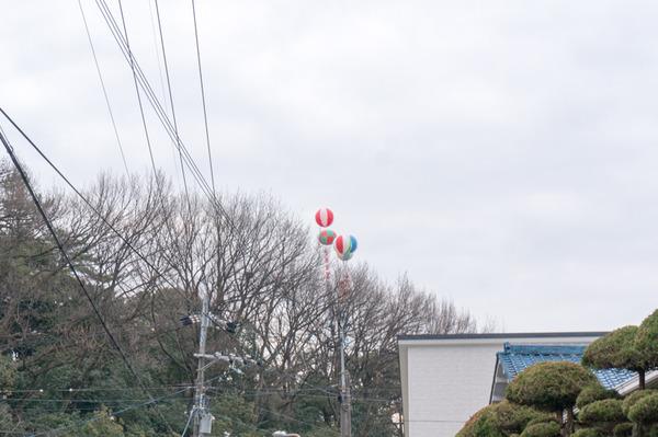 成田山節分祭-3
