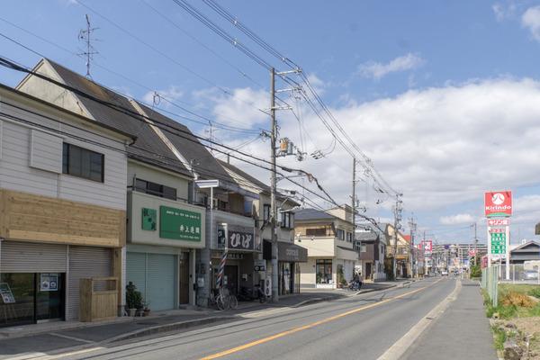 JAPANICHIGO-16032605