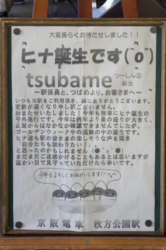 つばつー-15051301